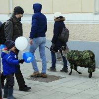 По улице водили... :: Владимир однакО...