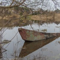 Затопленная лодка. :: Виктор Евстратов