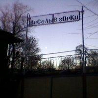 В парку :: Миша Любчик