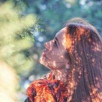 Оранжевое настроение :: Андрей Майоров