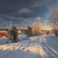 Утреннее солнце высветило мне... :: Александр Попов