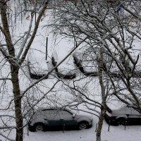 Вот и к нам весна пришла. 19 апреля 2017 г .Отличная зима выдалась это весной. :: Валерия  Полещикова