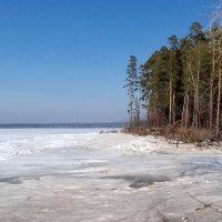 Берег реки Бердь . Начало апреля. :: Мила Бовкун
