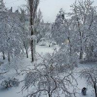 Немного про зиму весной или апрельский форсмажор... :: Александр Резуненко