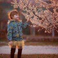 Моя девочка у цветущего дерева :: Елизавета Тимохина