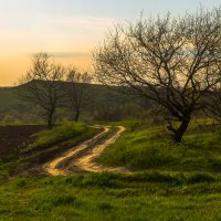 Весна на Кубани :: Евгений Астахов
