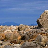 холодные камни у холодного моря. :: Ирэна Мазакина