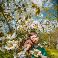 один лишь раз сады цветут :: Мария Корнилова