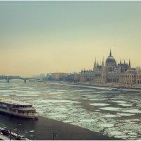 Утро над Дунаем... :: алексей афанасьев