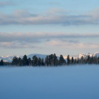 Туман над оз.Светлом.Рассвет. :: Любовь Иванова