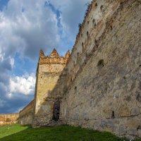 Замковая стена. :: Юрий Гординский