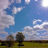 Огромное небо - одно для всех :: Alexander Andronik