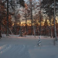 Зима ушла... :: Александр Попов
