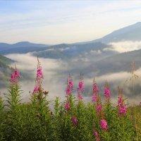 Утро встречает туманом :: Сергей Чиняев