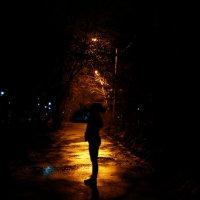 Всё та же полночь. :: Ирина