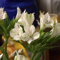 Цветы :: Валерий Самородов