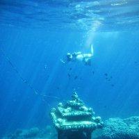 Подводный мир.Бали :: Творческая группа КИВИ