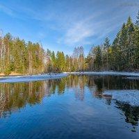 Прогулка на природе :: Борис Устюжанин