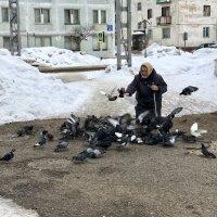 И старушка крошит хладный мякиш сизым голубям :: Oleg Akulinushkin