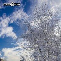 Зима :: Антуан Мирошниченко