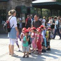 Идем в зоопарк :: Tanja Gerster