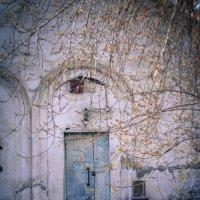Старая баня :: Анна