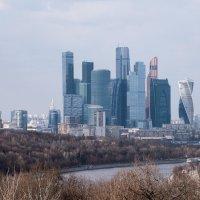 Москва-сити :: Андрей Илларионов