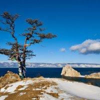 Священное дерево на берегу острова :: Анатолий Иргл