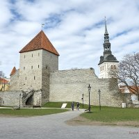 Fotostuudio AKOLIT, Tallinn, Arkadi Baranov fotograaf. :: Аркадий  Баранов Arkadi Baranov