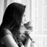 Она и кот :: Ольга Лапшина