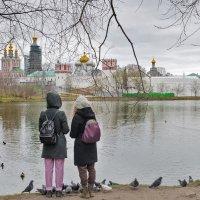 У стен Новодевичьего монастыря :: Ирина Шарапова