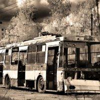 trolleybus cemetery :: alexander zvir