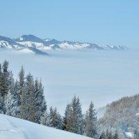 над облаками :: Горный турист Иван Иванов