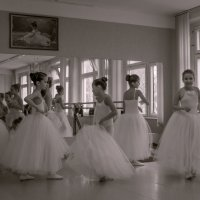 Балеринки) :: Лариса Журавлева