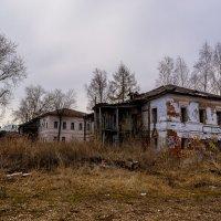 Не декорация :: Валерий Симонов