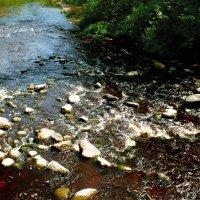 На реке Ящера :: Андрей Кротов