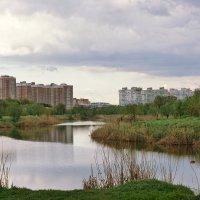 Остатки Карасунских озёр в Краснодаре :: Андрей Майоров