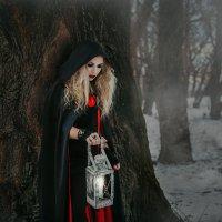 в лесу :: Анна Цёва