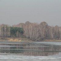 последний лед :: Alla Swan