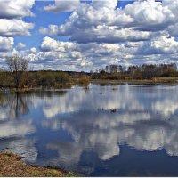 В реку смотрятся облака... :: Вячеслав Минаев