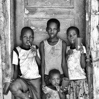 Ботсвана - страна Чупа Чупсов :: Roman Mordashev