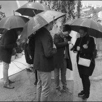 Апрельский дождь :: Василий Чекорин