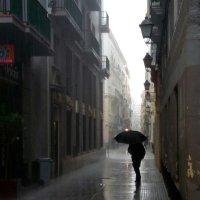 В дождь :: Natalia Almosti