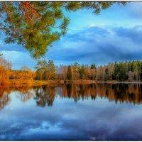 Красный пруд :: Сергей Базылев