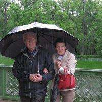 Дождь в Летнем саду :: Наталья