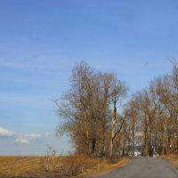 Поездки в ясный день апрельский... :: Tatiana Markova