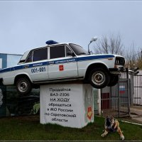 Осторожно... ну очень злая собака! :: Anatol Livtsov