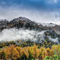 Осень. :: Александр Криулин
