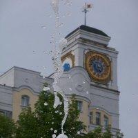 Причудливые водные узоры :: Светлана Сейбянова