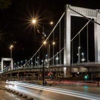 Ночной Будапешт. Мост Эржебет. :: Сергей Николаевич Бушмарин